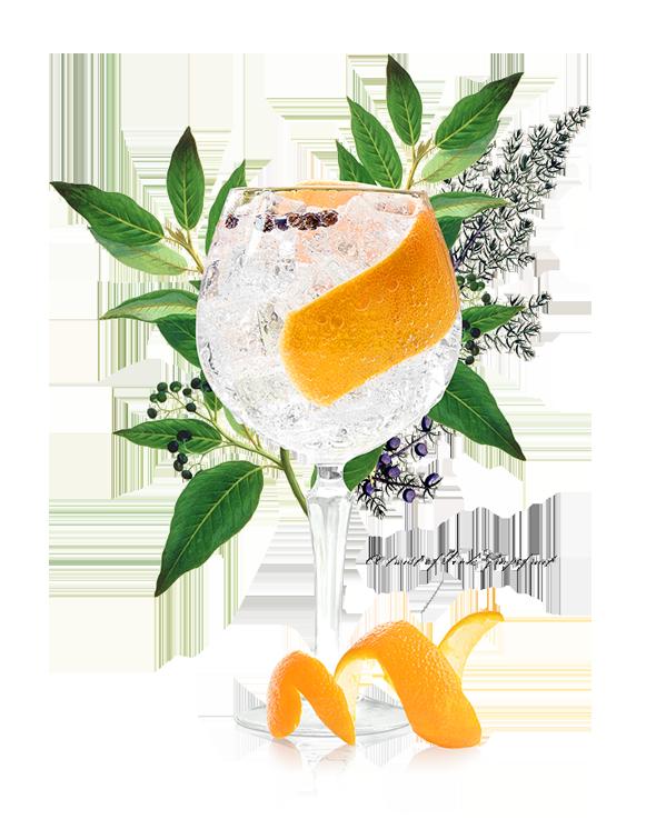 portobello-road-gin_5